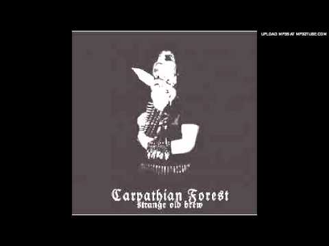 Carpathian Forest - Bloodcleansing mp3