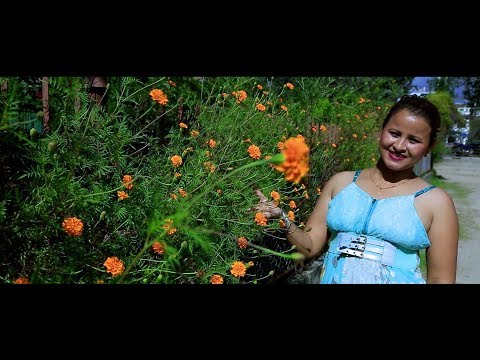 New Nepali Song 2074/2017   TIMRO DILKO MAJHERIMA   Rita K C _ Netra Lal Shrestha