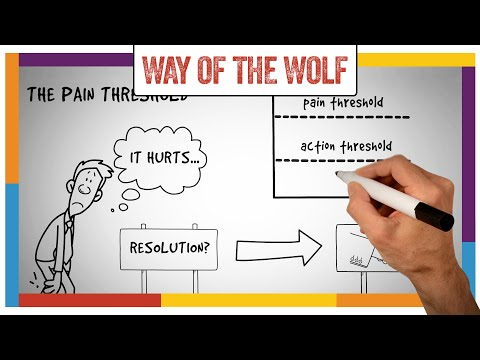 Way Of The Wolf by Jordan Belfort Summary, Review & Implementation Guide (ANIMATED)