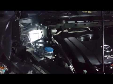 carExpert - auto detailing engine cleaning