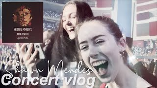 Shawn Mendes Concert VLOG ft. Alessia Cara   March 2019 Sweden