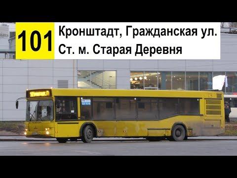 """Автобус 101 """"Ст. м. """"Старая Деревня"""" - Кронштадт, Гражданская ул."""""""