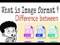 What Is Image Format ? Jpg,png,gif ? Explained In Hindi