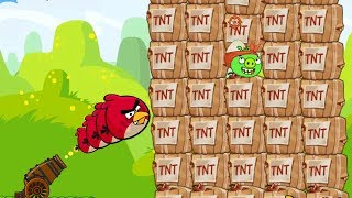 Angry Birds Collection Hacked 1 - SHOOTING MAXIMUM BIRDS TO BLAST 100 TNT HUGE PIGS!