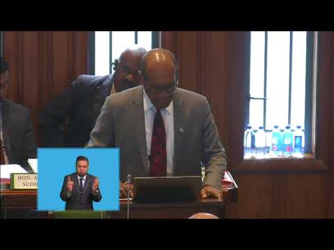 Fijian Minister for Employment, Ministerial Statement on Industrial Relations