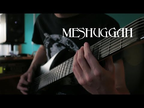 Meshuggah - In Death Is Death | Guitar Cover 2019