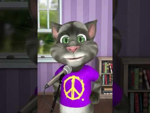 el gato mas ablon