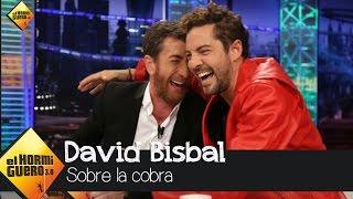 Así vivió David Bisbal la famosa 'cobra' - El Hormiguero 3.0