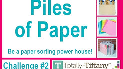 Organization  Challenge #2 - Piles of Paper