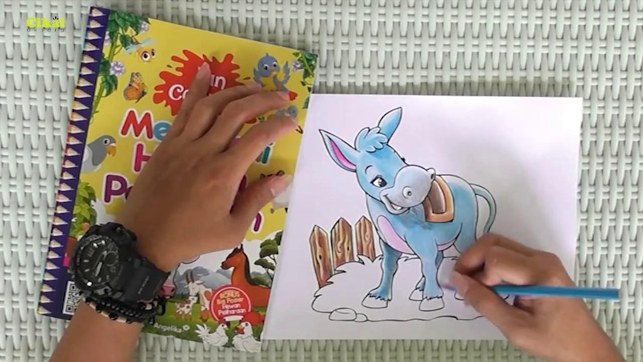 Cara Mewarnai Hewan Peliharaan Dengan Pensil Warna Bonus Buku Fun Coloring