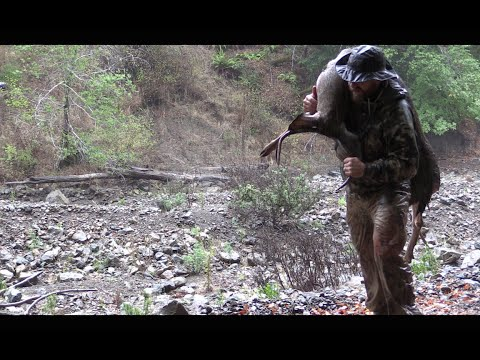 The Hunt & The Harvest - Hunting Deer, Wild Pig & Meateating In California