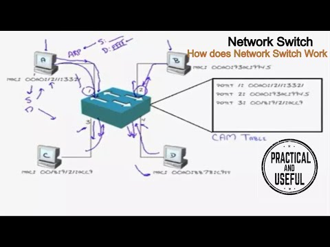 Network SWITCH - Fundamental concepts EXPLAINED - How does Network SWITCH WORK