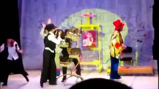 Поход №2 театр кошек