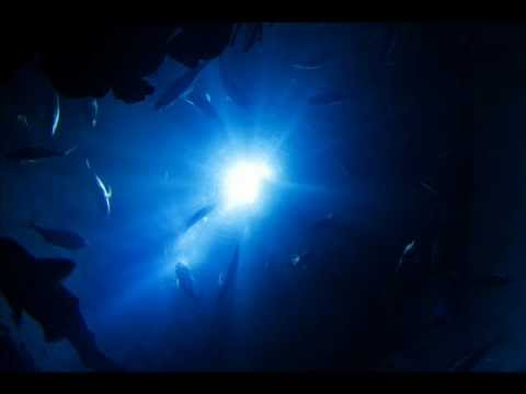 Sounds Of The Deep Ocean