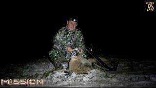 Охота с арбалетом на муфлона ночью с подхода