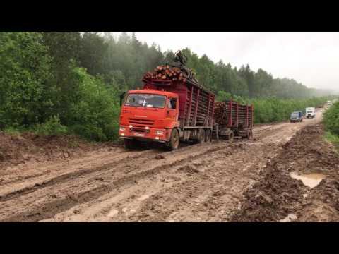 дорога Лальск-Папулово