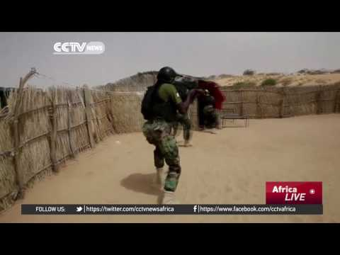 Regional offensive struggling to defeat Boko Haram