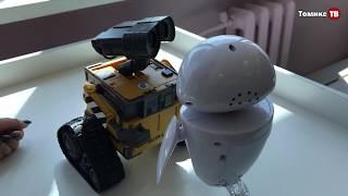Во Владимире открылась выставка роботов