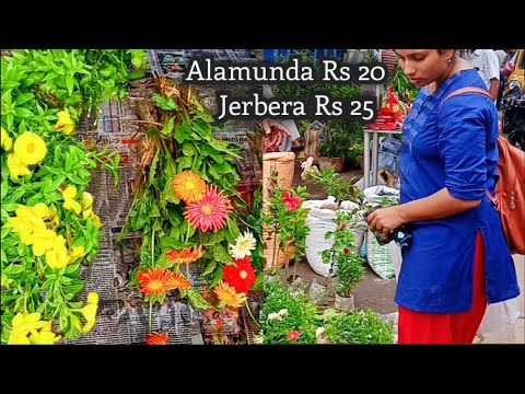 Kolkata Flower Market At Galiff Street Visit 30th June 2019 The Largest Flower Market In India