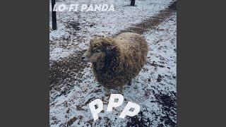 Lo-fi Panda - ppp (Acoustic Ver.)