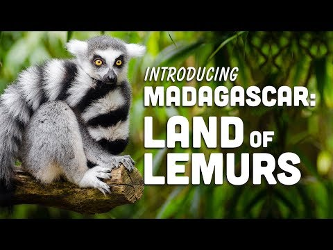 Madagascar: Land of Lemurs | Travel to Madagascar