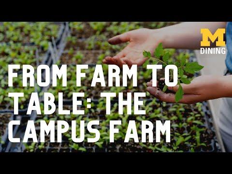 Campus Farm and Michigan Dining