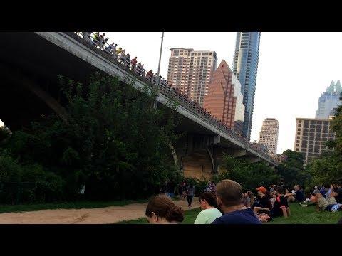 Detour #15 - South Congress Bridge Bats - Austin, Texas