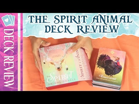 the-spirit-animal-oracle-deck-review