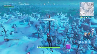 Fortnite#2 lets get a win