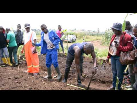 UNION FARMS OF AFRICA FIELD TRAINING 3