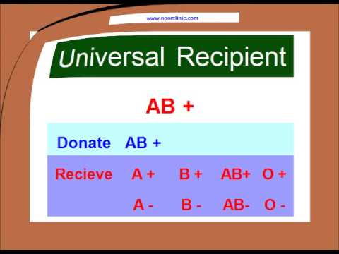 Blood Type Matching Compatibility Chart Urdu/Hindi - Youtube