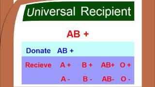 Blood Type Matching Compatibility Chart Urdu/Hindi
