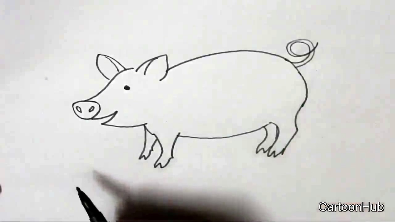 How to draw a pig in easy steps for children kids beginners