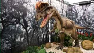 Dino live picture gallery.mp4  - YouTubehttps   login.yahoo.com config login.flv