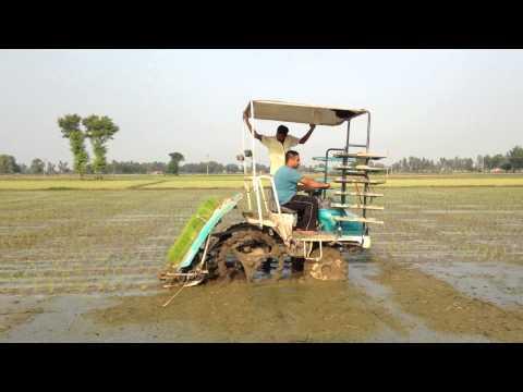 Kubota paddy transplanter six lane