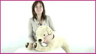 Teeboo Собака интерактивная 91209R) 100см