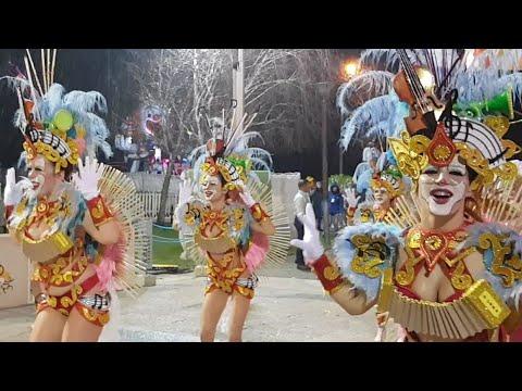 Trepa Coqueiro 2019 - Desfile nocturno 2019 ( Estarreja) 1°