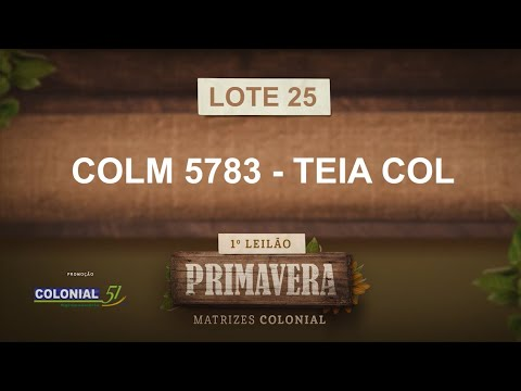 LOTE 25   COLM 5783