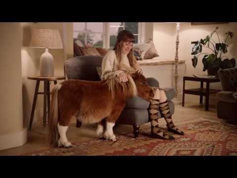 "Amazon Prime - Anuncio pony 30"""