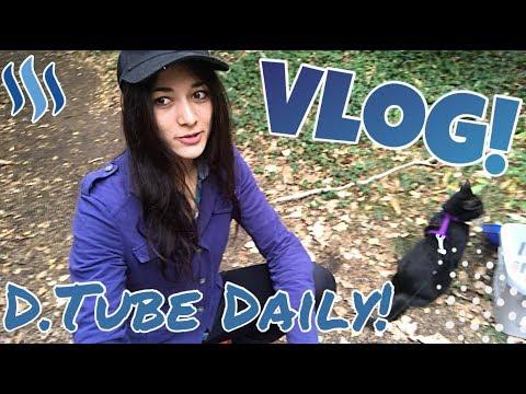 Daily-Vlog #3 - Ein Tag für die Katz?!// Im wahrsten Sinne des Wortes.