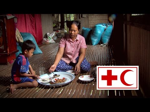 Cambodia: Harmonized approach to community health