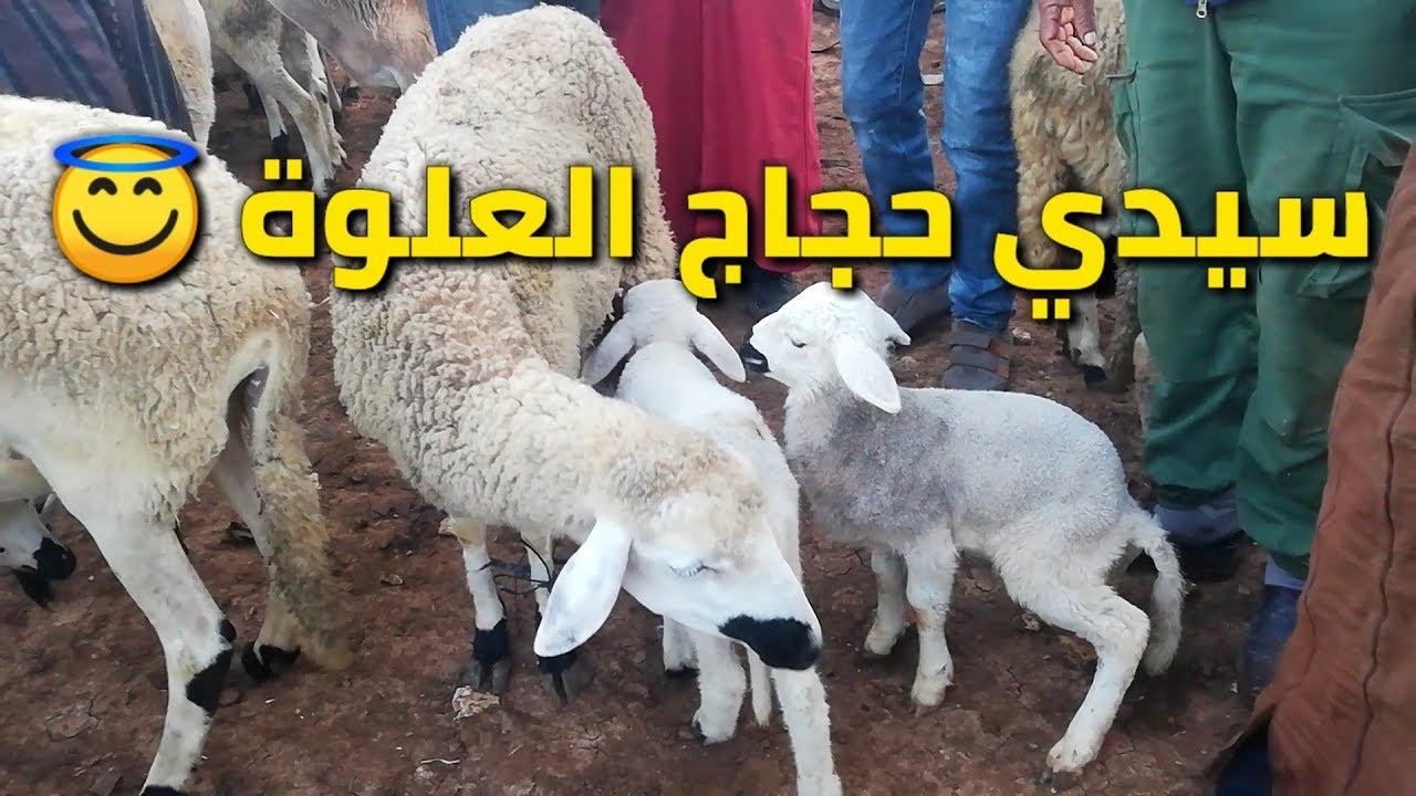 مباشر من قلب سوق سيدي حجاج أولاد مراح (العلوة) اجواء جد جد رائعة