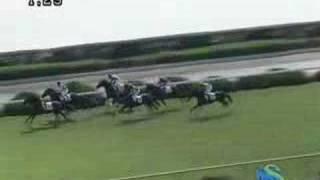 2007年11月3日 京都4R 障害未勝利 テイエムヤマトオー