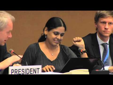 Human Rights Council panel: Internet freedom, security and development