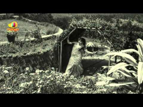 Pagalile Paarkavandadennu Song | Maadi Veetu Mapillai Tamil Movie | Jayalalitha | Ravichandran
