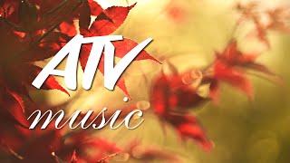 Download Шедевр современной Музыки 💎 Очень Красивое Видео для Души! Чиллаут #AntistressTV Mp3 and Videos