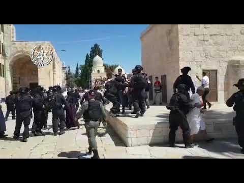 כניסת נאמני הר הבית עוררה מהומות (צילום: דוברות משטרת ישראל)