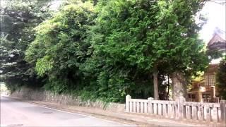 美祢市の文化財 大嶺町 八幡磨能峰宮の社叢