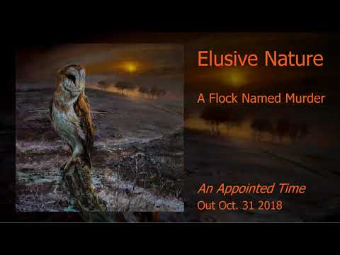 A Flock Named Murder - Elusive Nature (An Appointed Time - 2018) Mp3