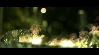 Arsenica - Yo Quiero Creer (Video Oficial) YouTube Videos